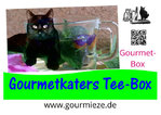 Gourmetkaters Tee-Box